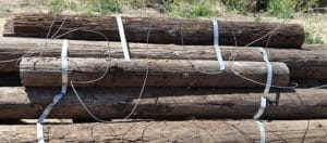 Photo of closeup of telephone poles on Bunker Hill Course